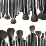 מברשות איפור – כלי העבודה של המתאפרת